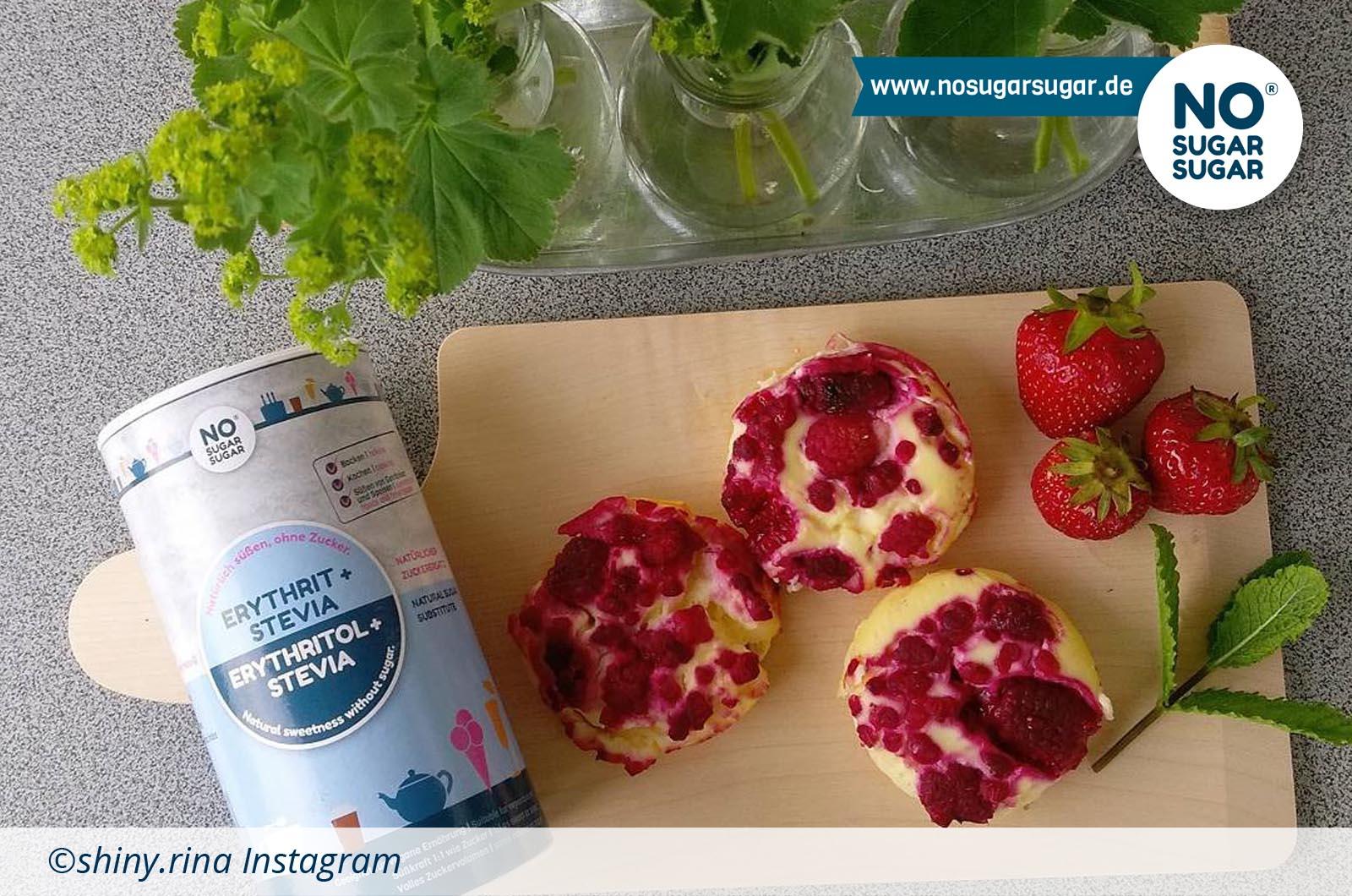 Quark-Protein-Muffins_shinyrina_web